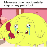 Memes, The Worst, and Pets: Me every time I accidentally  step on my pet's foot I'M THE WORST PERSON EVER 😭 adventuretime