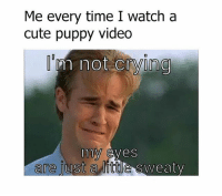 So me 😂😂 so cute 😍🐶🐕😢😢: Me every time I watch a  cute puppy video  m not crying  my eyes  are just  a little sweaty So me 😂😂 so cute 😍🐶🐕😢😢