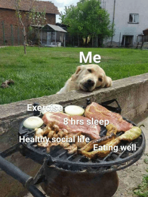 Life, Exercise, and Sleep: Me  Exercise  8 hrs sleep  Healthy social life  Eating well Meirl