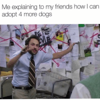 Dogs, Friends, and Memes: Me explaining to my friends how l can  adopt 4 more dogs  ogsb Just listen, follow along, it's the best thing for everybody. @dogpartying