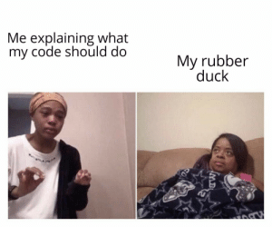 Rubber duck debugging: Me explaining what  my code should do  My rubber  duck  IMB Rubber duck debugging