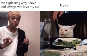 Love, Memes, and Cat: Me explaining why I have  and always will love my cat  Му cat Crossover Memes Are On The Rise! Invest! via /r/MemeEconomy https://ift.tt/2O5EJY8