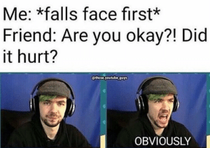 Friends, Memes, and youtube.com: Me: *falls face first*  Friend: Are you okay?! Did  it hurt?  gthose youtube.ouys  OBVIOUSLY My friends always laugh THEN ask if I'm okay😂 (Creds to owner) jackaboy septicplier septic septicsam septiceye septiceyesam jacksepticeyefan youtube youtubers jacksepticeye ethannestor crankgameplays markandjack markiplier gamegrumps septiplieraway lordminion777 youtubegaming yourwelcometour muyskerm markimoo tinyboxtim danisnotonfire amazingphil danhowell phillester positivementalattitude seanmcloughlin markfishbach