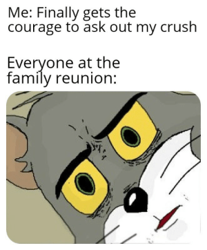Crush, Family, and Meme: Me: Finally gets the  courage to ask out my crush  Everyone at the  family reunion Unsettled Tom meme dump