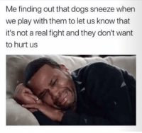 Dogs, Fight, and Play: Me finding out that dogs sneeze when  we play with them to let us know that  it's not a real fight and they don't want  to hurt us Now ya know