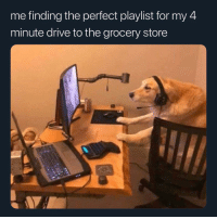 Funny, Best, and Drive: me finding the perfect playlist for my 4  minute drive to the grocery store What's the best grocery chain. Can't catch me anywhere besides Pavilions