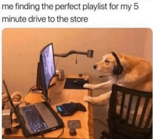 Trying to do my best …: me finding the perfect playlist for my 5  minute drive to the store Trying to do my best …