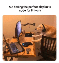 Code, For, and Perfect: Me finding the perfect playlist to  code for 8 hours Literally me [oc]