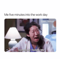 Funny, Gif, and Zero: Me five minutes into the work day  @zero_fucksgirl  Somebody Sedate Me!  GIF Where's the lie @zero_fucksgirl 😅