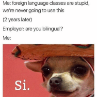 Funny, Introvert, and Memes: Me: foreign language classes are stupid,  we're never going to use this  (2 years later)  Employer: are you bilingual?  Me:  IG: The Funny Introvert  Si, @donny.drama has very nice memes