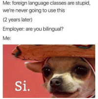 Memes, Never, and 🤖: Me: foreign language classes are stupid  we're never going to use this  (2 years later)  Employer: are you bilingual?  Me:  IG: ThoFunnyintrovert  Si. Hola señor como estas @thefunnyintrovert
