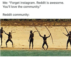 "*tribal drumming intensifies*: Me: ""Forget instagram. Reddit is awesome.  You'll love the community.""  Reddit community: *tribal drumming intensifies*"