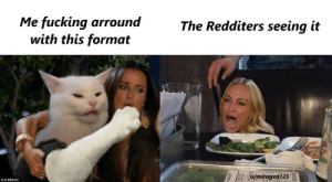 You get to love this cat: Me fucking arround  with this format  The Redditers seeing it  u/miragen125  OO BRAVO You get to love this cat