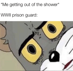 Shower, Prison, and Dank Memes: Me getting out of the shower*  WWII prison guard: Dont be offended plese