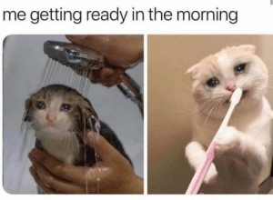 MeIRL, Morning, and The Morning: me getting ready in the morning meirl