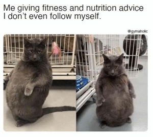 Me giving fitness and nutrition advice I don't even follow myself.  Gymaholic App: https://www.gymaholic.co  #fitness #motivation #workout #meme #gymaholic: Me giving fitness and nutrition advice I don't even follow myself.  Gymaholic App: https://www.gymaholic.co  #fitness #motivation #workout #meme #gymaholic