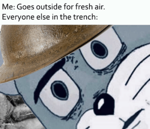 Fresh, Air, and Soldier: Me: Goes outside for fresh air.  Everyone else in the trench:  u/Jashoa Do you want to get yourself killed soldier?!