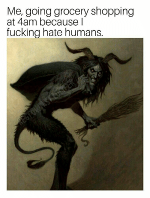 meirl: Me, going grocery shopping  at 4am because l  fuckina hate humans. meirl