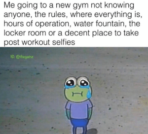 Gym, Water, and Knowing: Me going to a new gym not knowing  anyone, the rules, where everything is,  hours of operation, water fountain, the  locker room or a decent place to take  post workout selfies  IG: @thegainz 🥺