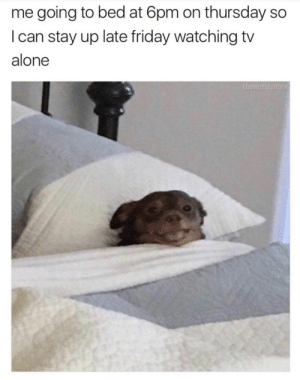 25+ Classy Memes That Will Light Up Your Mood #funny #funnymemes #lol #humor #haha #sarcasm #viral: me going to bed at 6pm on thursday so  I can stay up late friday watching tv  alone  theworldpolice 25+ Classy Memes That Will Light Up Your Mood #funny #funnymemes #lol #humor #haha #sarcasm #viral