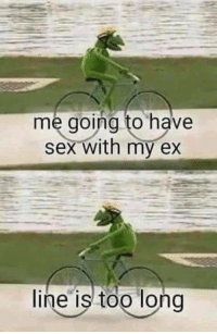 Sex, Kermit, and Poor: me going to have  sex with my ex  line is too long Poor Kermit!