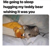 Bear, Sleep, and Teddy Bear: Me going to sleep  hugging my teddy bear  wishing it was you Wishing it was you
