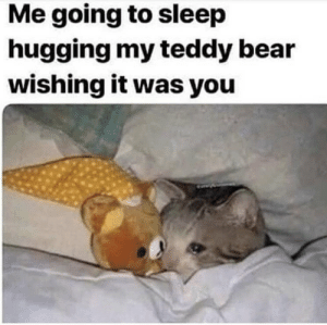 https://t.co/PVgelhNhbh: Me going to sleep  hugging my teddy bear  wishing it was you https://t.co/PVgelhNhbh