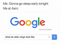 Dogs, Google, and Memes: Me: Gonna go sleep early tonight  Me at 4am:  Google  IG:PolarSaurusRex  what do alien dogs look like Serious question please answer