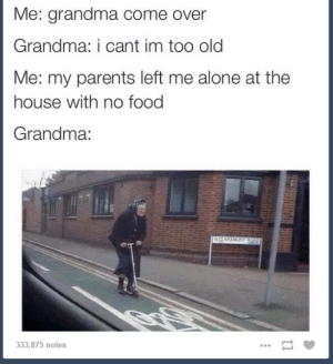 Grandmas to the rescueomg-humor.tumblr.com: Me: grandma come over  Grandma: i cant im too old  Me: my parents left me alone at the  house with no food  Grandma:  333,875 notes Grandmas to the rescueomg-humor.tumblr.com