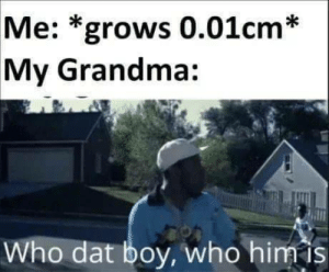 meirl: Me: *grows 0.01cm*  My Grandma:  Who dat boy, who him is meirl