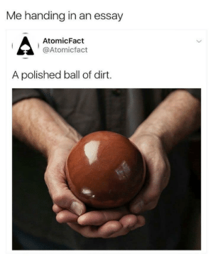 essay: Me handing in an essay  AtomicFact  @Atomicfact  A polished ball of dirt.