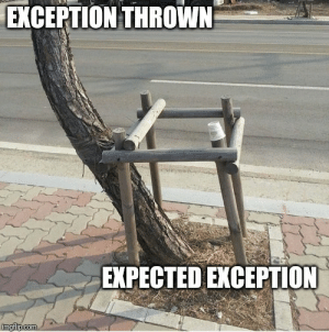 Me handling Exception in best way.: Me handling Exception in best way.