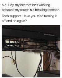 I...I don't think i'm good looking enough to turn on a raccoon 😩 | 👉 @betasalmon for more: Me: Hey, my internet isn't working  because my router is a freaking raccoorn  Tech support: Have you tried turning it  off and on again?  @BetaSalmon  0 I...I don't think i'm good looking enough to turn on a raccoon 😩 | 👉 @betasalmon for more