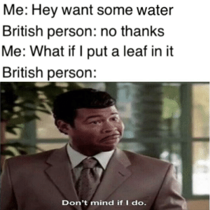 Queen, Live, and Water: Me: Hey want some water  British person: no thanks  Me: What if I put a leaf in it  British person:  Don't mind if I do. Long live the queen