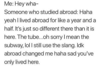 Ironic, Lol, and Sorry: Me: Hey wha  Someone who studied abroad: Haha  yeah I lived abroad for like a year and a  half. It's just so different there than it is  here. The tube...oh sorry I mean the  subway, lol I still use the slang. ldk  abroad changed me haha sad you've  only lived here. It's like not for everyone