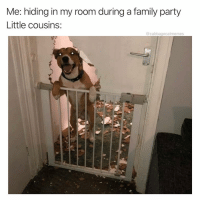 Family, Party, and Games: Me: hiding in my room during a family party  Little cousins:  @cabbagecatmemes U got any games