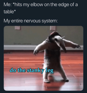 MeIRL, Table, and Edge: Me: *hits my elbow on the edge of a  table*  My entire nervous system:  @a.valid username  do the stanky leg Meirl