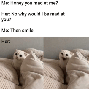 *hissing by pratttatt MORE MEMES: Me: Honey you mad at me?  Her: No why would I be mad at  you?  Me: Then smile.  Her: *hissing by pratttatt MORE MEMES