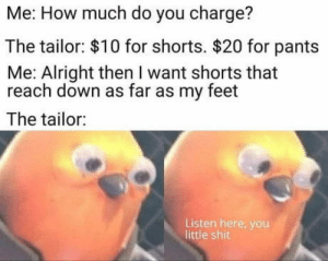 Shit, Alright, and How: Me: How much do you charge?  The tailor: $10 for shorts. $20 for pants  Me: Alright then I want shorts that  reach down as far as my feet  The tailor:  Listen here, you  little shit Bamboozled