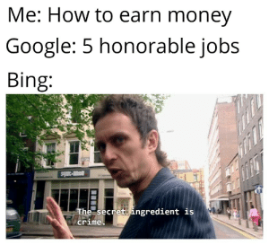 Bing is criminal: Me: How to earn money  Google: 5 honorable jobs  Bing:  avi-3mls  The secret ingredient is  crime Bing is criminal