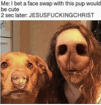 Face swap gone wrong: Me: I bet a face swap with this pup would  be cute  2 sec later: JESUSFUCKINGCHRIST Face swap gone wrong
