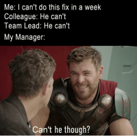 Lead, Team, and Manager: Me: I can't do this fix in a week  Colleague: He can't  Team Lead: He can't  My Manager:  Can't he though? Last week before release
