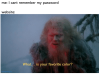 insert monty python quote: me: I cant remember my password  website:  What... is your favorite color?  Instagram gay insert monty python quote