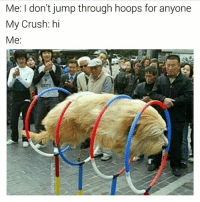 Crush, Girl Memes, and Change: Me: I don't jump through hoops for anyone  My Crush: hi  Me:  uTy Let me change myself completely for you 😍
