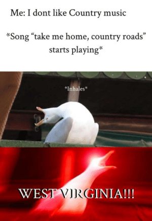 "memehumor:  Don't even pretend this isn't you: Me: I dont like Country music  02  *Song ""take me home, country roads  starts playing*  *Inhales  WES  GINIA!! memehumor:  Don't even pretend this isn't you"