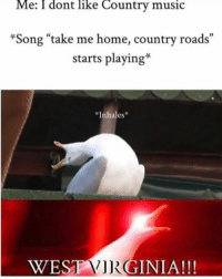 "Inhales: Me: I dont like Country music  *Song ""take me home, country roads""  starts playing*  *Inhales  ESTGINIA!!!"