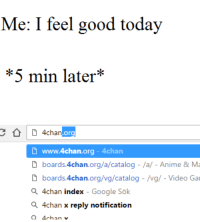 Tomeirlformeirl: Me: I feel good today  *5 min later  D 4chan  org  D www.4chan org 4chan  D boards 4chan.org/a/catalog /a/- Anime & Ma  D boards 4chan.org/vg/catalog /vg/ Video Ga  a chan index Google Sok  a 4chan x reply notification  4chan v Tomeirlformeirl