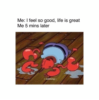 😭: Me: I feel so good, life is great  Me 5 mins later  (sobbing) 😭