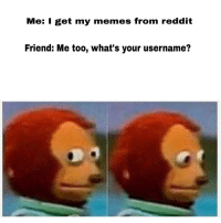 Memes, Reddit, and Friend: Me: I get my memes from reddit  Friend: Me too, what's your username? Sweating bullets
