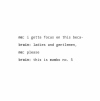 Brain, Focus, and Trendy: me: i gotta focus on this beca-  brain: ladies and gentlemen,  me: please  brain: this is mambo no. 5 yes!!!